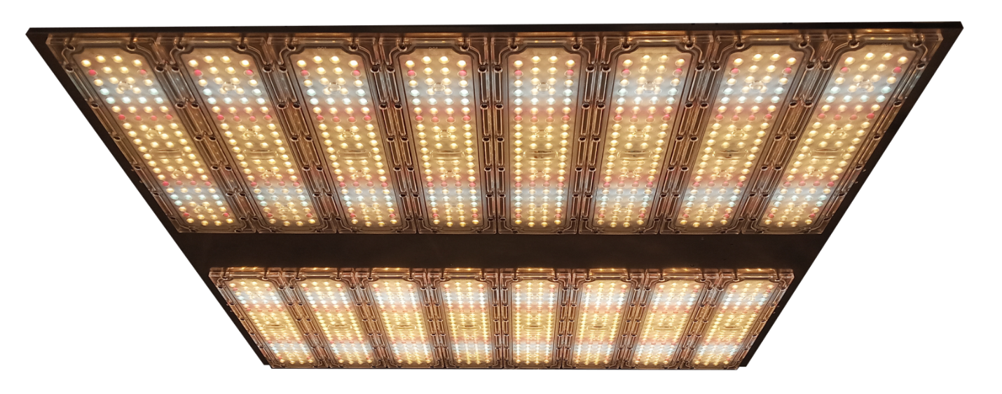 High Power LED grow light